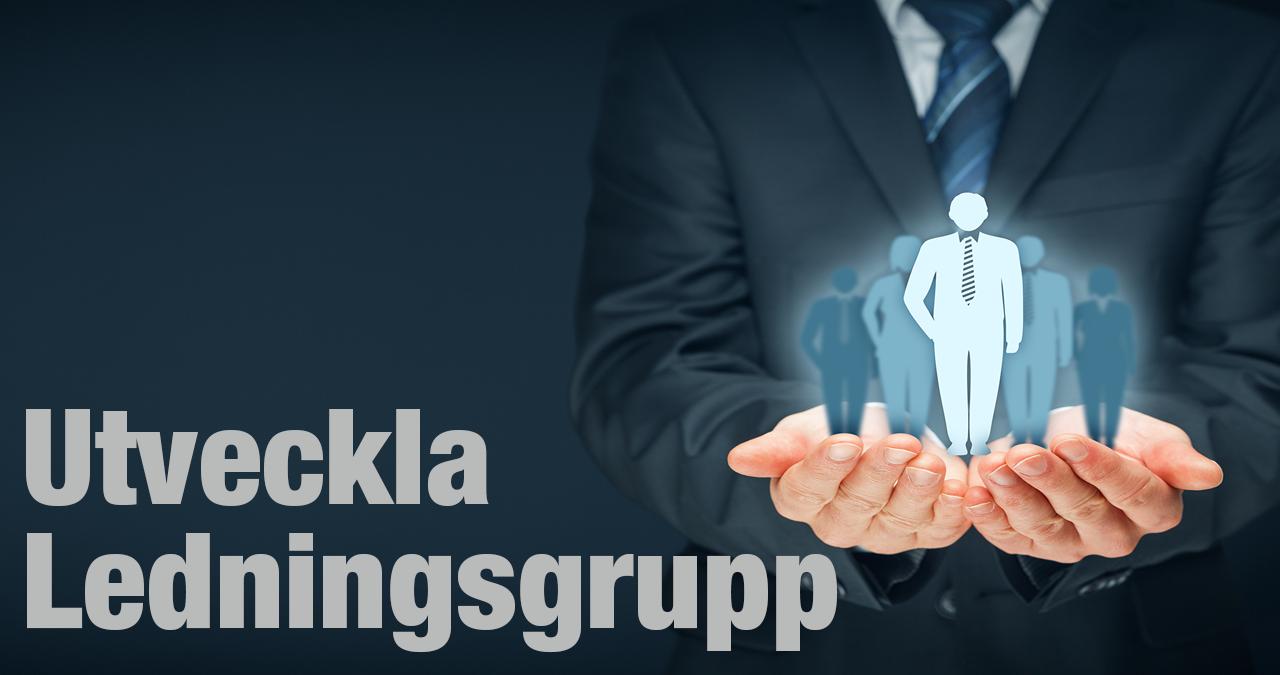 Göran Persson Förändringskonsult AB Utveckla ledningsgrupp